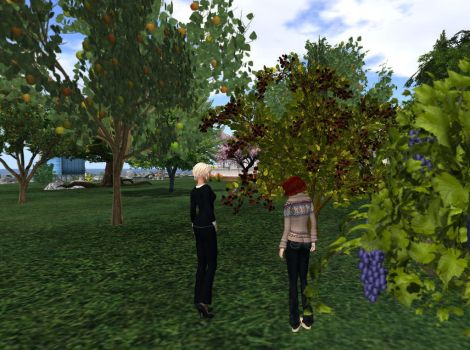 Inspect blackberry bushes by Leah-Maries