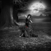 Lost Wood Melody... by WhiteBook