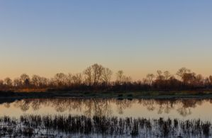morning mirror by clochartist-photo