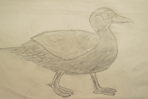 Texture Duck by doodle-guy7