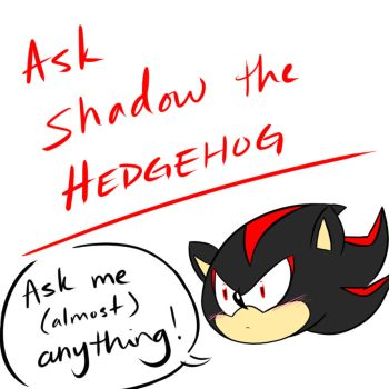 Ask Shadow the Hedgehog (for 2017) by alleycatwoman127