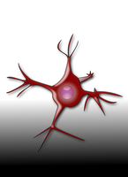 Neuron by elegantsolution
