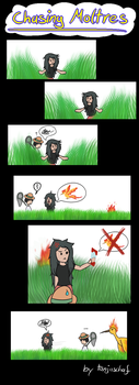 Chasing Moltres by TanjaSchaf