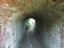 Brick Tunnel by fuguestock