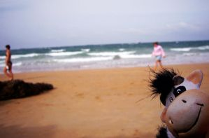 PunkyCow in the Beach by Nakteve