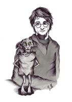 Harry and Dobby by inga-h