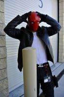 Red Hood: Born To Die by kay-sama
