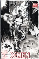 Punisher Blank Variant Cover 2 by BillReinhold