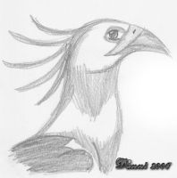 Birdy :D by Danni-poo