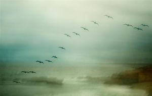 Formation3 by Markus43