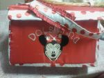 Minnie Mouse babys changing bag by Now3D