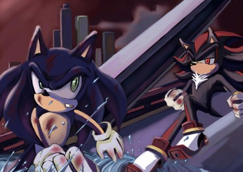 SONIC AND SHADOW.. by lkt565760