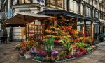 Beautiful Flower Shop by pingallery