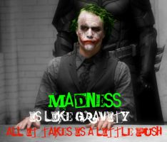 Madness is like gravity by Melciah1791