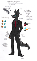 Shadow Reference 2011-2012 by Neon-Slushie