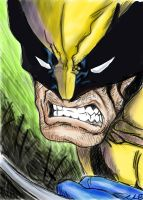 Wolverine - sketch 2 by NGC-7293