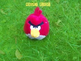 ANGR BIRDS IN REAL LIFE by Zeek-LUVS-LMFAO