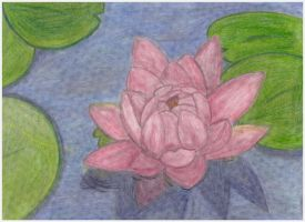 The Lotus by vctoriabb2