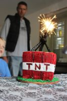 Minecraft TNT block cake by serseus