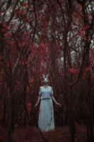 The silence of woods by artofinvi