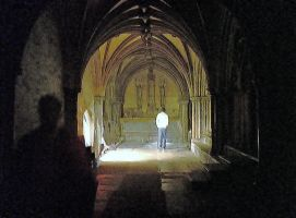 the cloisters are cold at night by peevee01