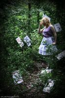 alice in wonderland: 6 by cainess