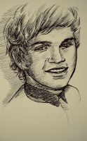 (+Video) Niall - One Direction Pen Drawing by nataliebeth