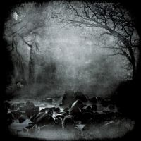 Swamp Fox by intao