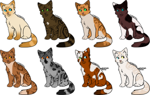 8 Kitty Designs by SpottedAdopts