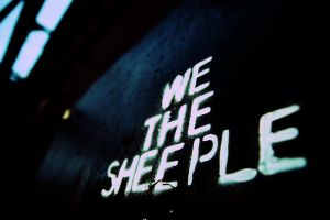 Sheeple by conflictfree