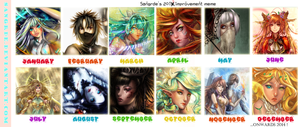 :: 2013 Improvement MEME :: by Sangrde
