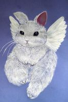 Bunny by matali
