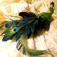 Curious Peacock Hair Comb by SteamSociety