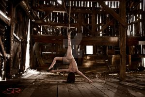 Just a Girl...In a Barn by mscontradiction