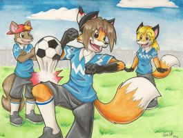 Comm: Soccer in the Park by NeroStreet