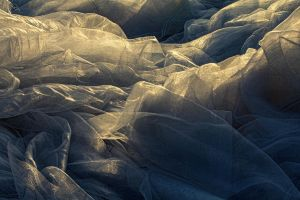 Net Fabric in sun light by greissdesign