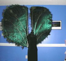 Giant Peacock Wings by angelratdesigns