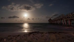 Full Moon over the Beach and Pier by Wyco
