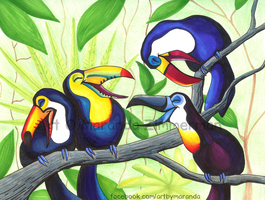 Talkitive Toucans by Coloran