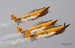 Canadian Harvard Aerobatic Team by AEisnor