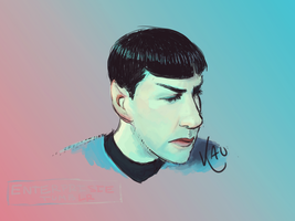 Spock Gift by PageOHaraWriter