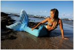 Mermaid in shallows 2 by wildplaces