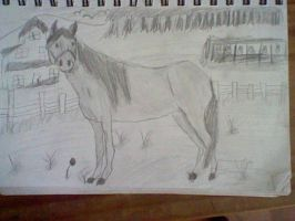 Horse drawing that i love by pungender