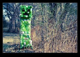 Lonely Creeper by MuuseDesign