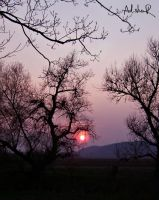 beyond the sunset by ad-shor