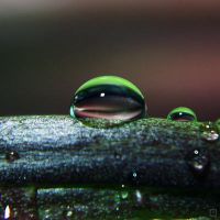 Droplet 5 by josgoh