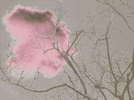 Cotton Candy by white-johar