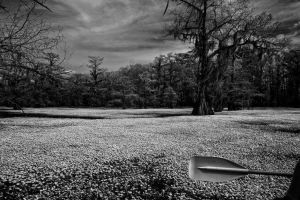 IR Caddo by badchess