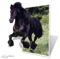 Worth1k.com: Friesian Gallop by KristineKreations