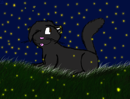 :at: Misty and fireflies by BoneXScourge11
